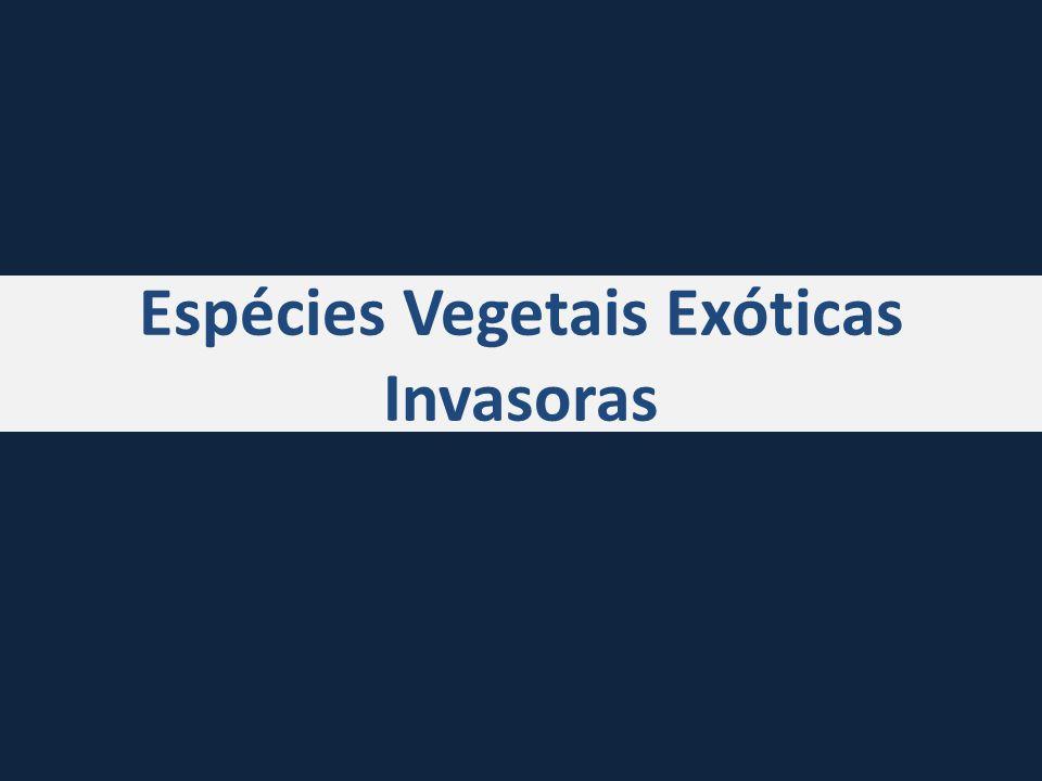 Espécies de plantas exóticas invasoras no Brasil Espécies exóticas no Brasil?.