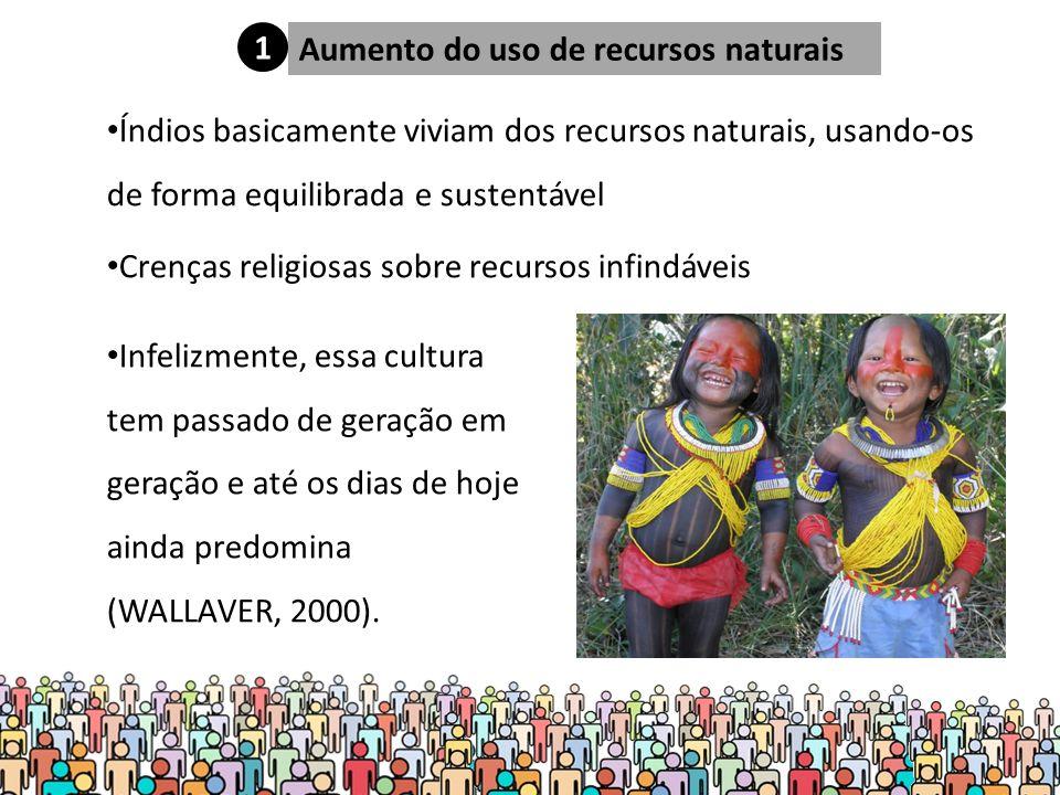 Aumento do uso de recursos naturais Índios basicamente viviam dos recursos naturais, usando-os de forma equilibrada e sustentável Infelizmente, essa cultura tem passado de geração em geração e até os dias de hoje ainda predomina (WALLAVER, 2000).