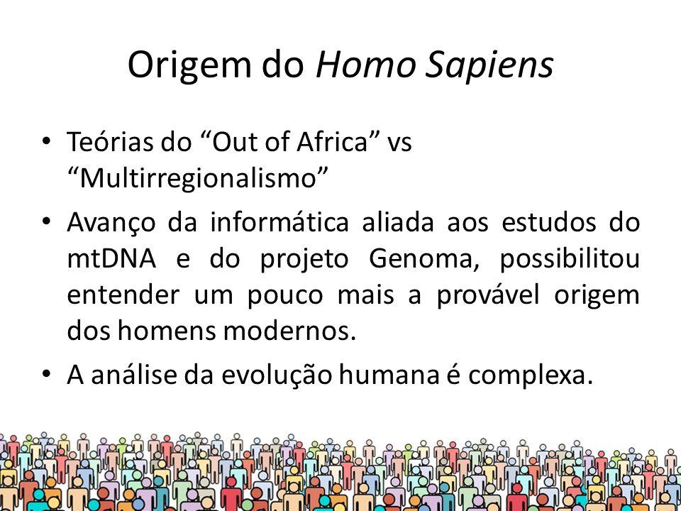 Origem do Homo Sapiens Teórias do Out of Africa vs Multirregionalismo Avanço da informática aliada aos estudos do mtDNA e do projeto Genoma, possibilitou entender um pouco mais a provável origem dos homens modernos.