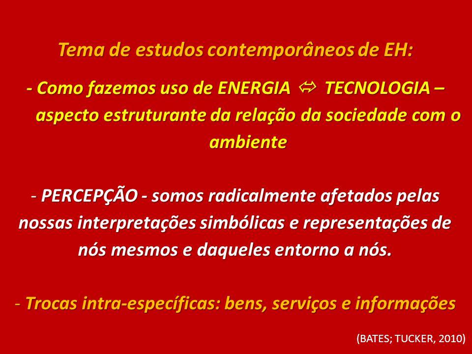 Tema de estudos contemporâneos de EH: - Como fazemos uso de ENERGIA TECNOLOGIA – aspecto estruturante da relação da sociedade com o ambiente - PERCEPÇ