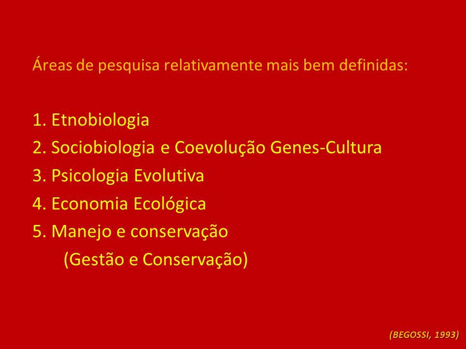 Áreas de pesquisa relativamente mais bem definidas: 1. Etnobiologia 2. Sociobiologia e Coevolução Genes-Cultura 3. Psicologia Evolutiva 4. Economia Ec