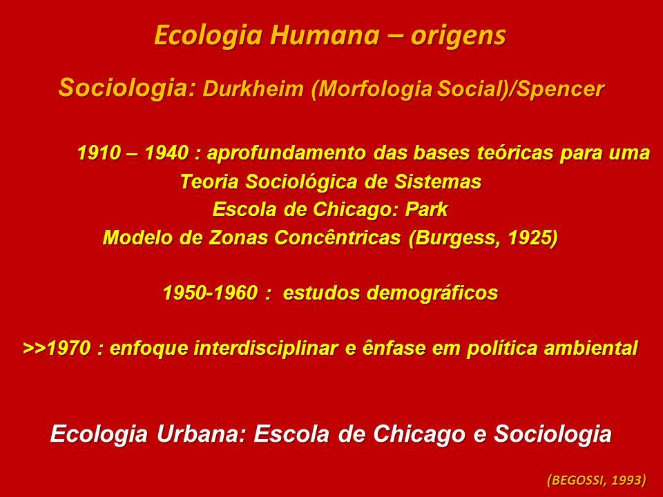 Ecologia Humana – origens Sociologia: Durkheim (Morfologia Social)/Spencer 1910 – 1940 : aprofundamento das bases teóricas para uma Teoria Sociológica