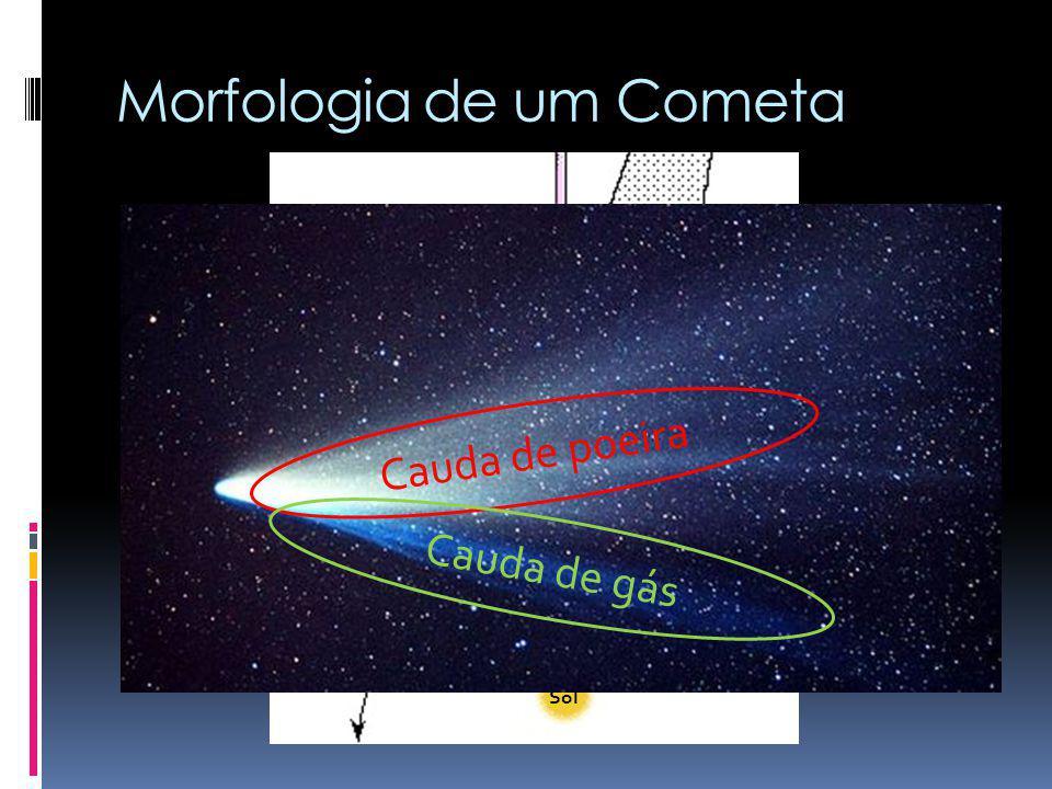 Morfologia de um Cometa Envelope de hidrogênio Cauda de poeira Sol Órbita do cometa Núcleo Coma ou Cabeleira Cauda de íons Cauda de poeira Cauda de gá
