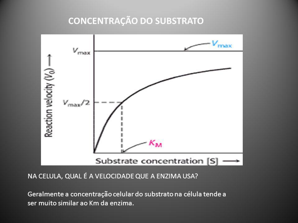 CONCENTRAÇÃO DO SUBSTRATO NA CELULA, QUAL É A VELOCIDADE QUE A ENZIMA USA? Geralmente a concentração celular do substrato na célula tende a ser muito