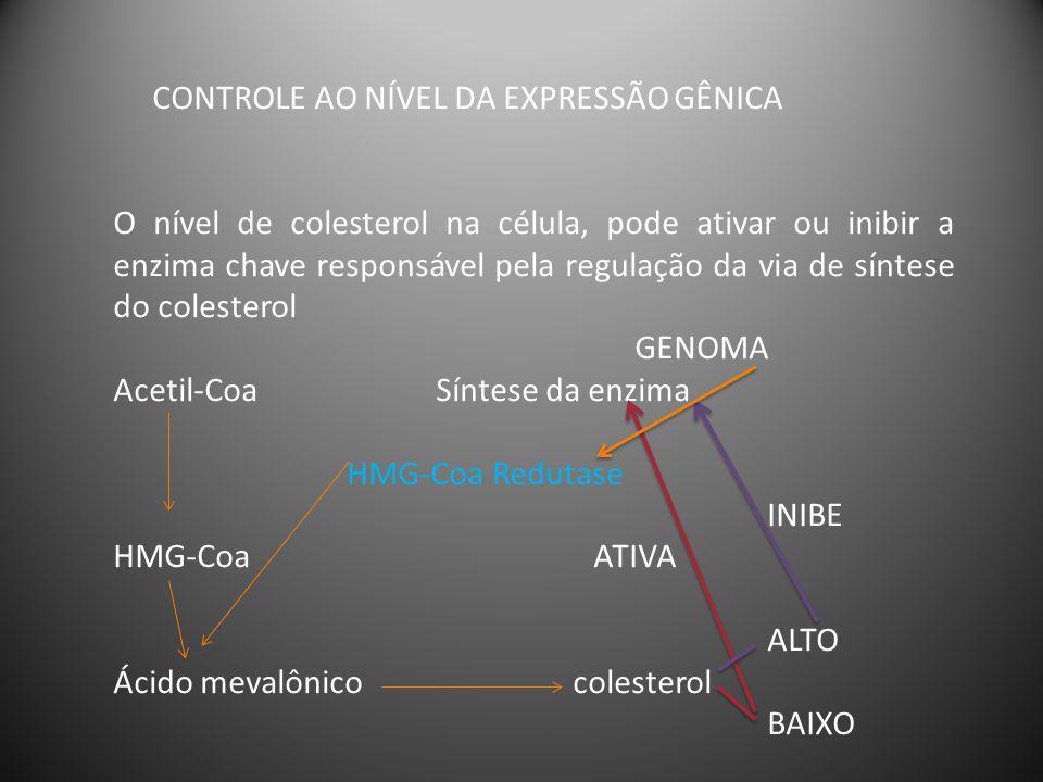 CONTROLE ALOSTÉRICO Proteínas alostéricas são aquelas que adquirem diferentes conformações induzidas pela ligação de moduladores.