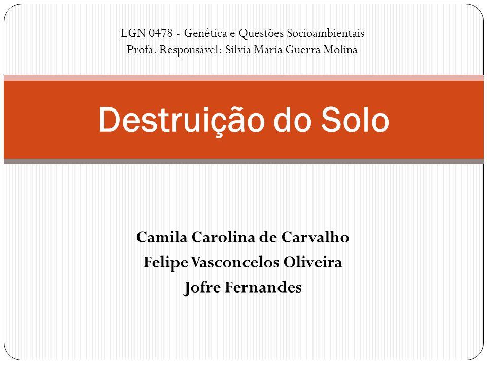 Camila Carolina de Carvalho Felipe Vasconcelos Oliveira Jofre Fernandes Destruição do Solo LGN 0478 - Genética e Questões Socioambientais Profa. Respo
