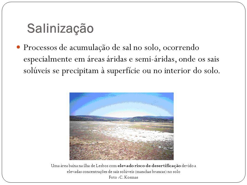 Salinização Processos de acumulação de sal no solo, ocorrendo especialmente em áreas áridas e semi-áridas, onde os sais solúveis se precipitam à super