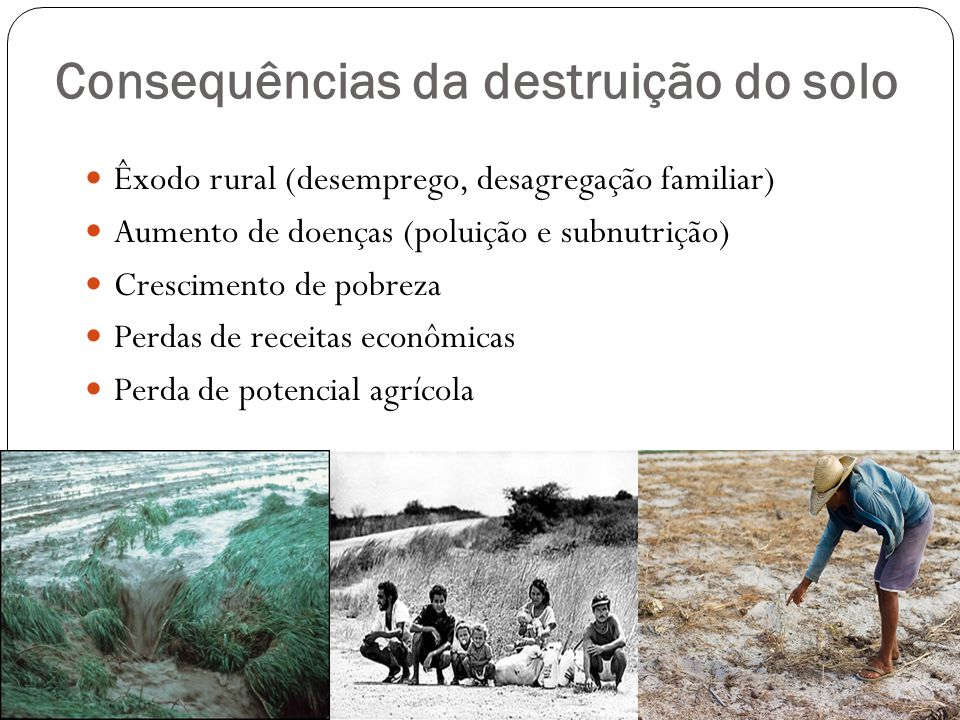 Consequências da destruição do solo Êxodo rural (desemprego, desagregação familiar) Aumento de doenças (poluição e subnutrição) Crescimento de pobreza