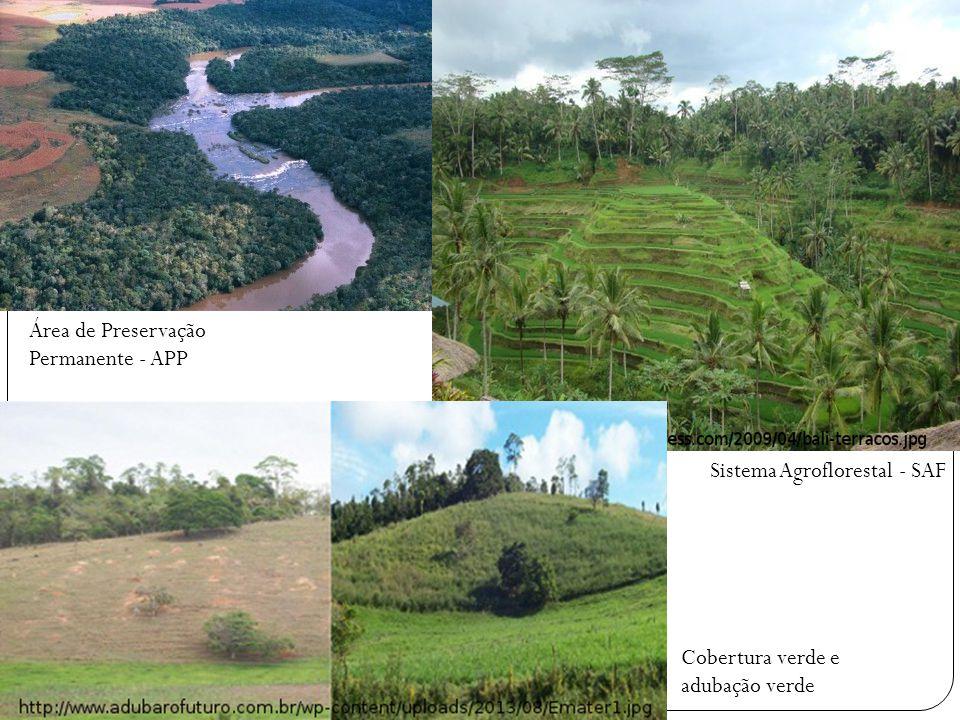 Área de Preservação Permanente - APP Sistema Agroflorestal - SAF Cobertura verde e adubação verde