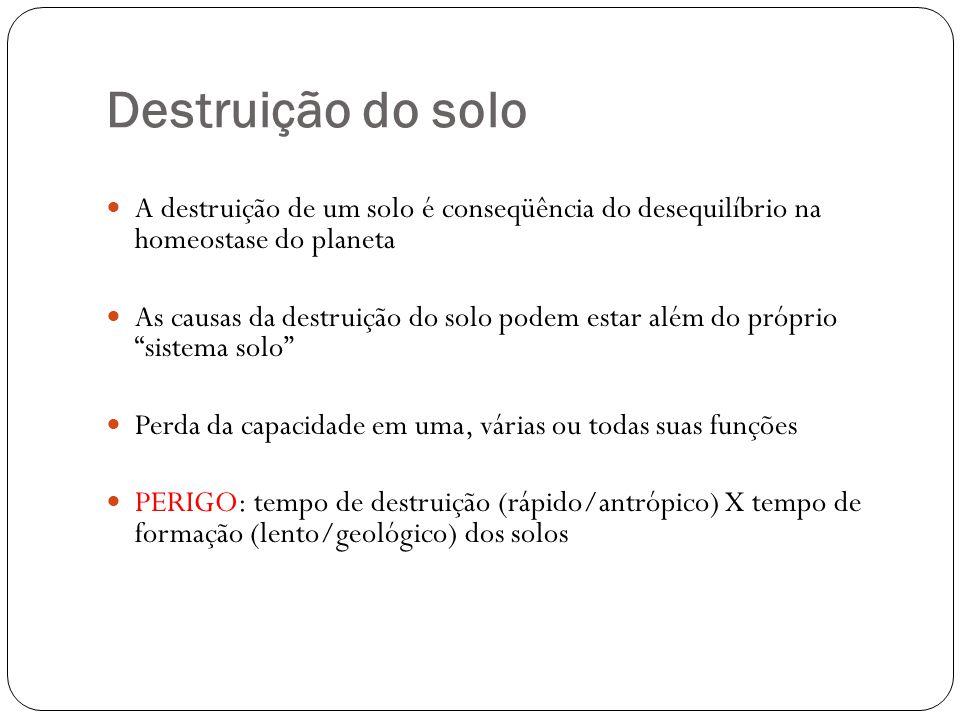 Destruição do solo A destruição de um solo é conseqüência do desequilíbrio na homeostase do planeta As causas da destruição do solo podem estar além d