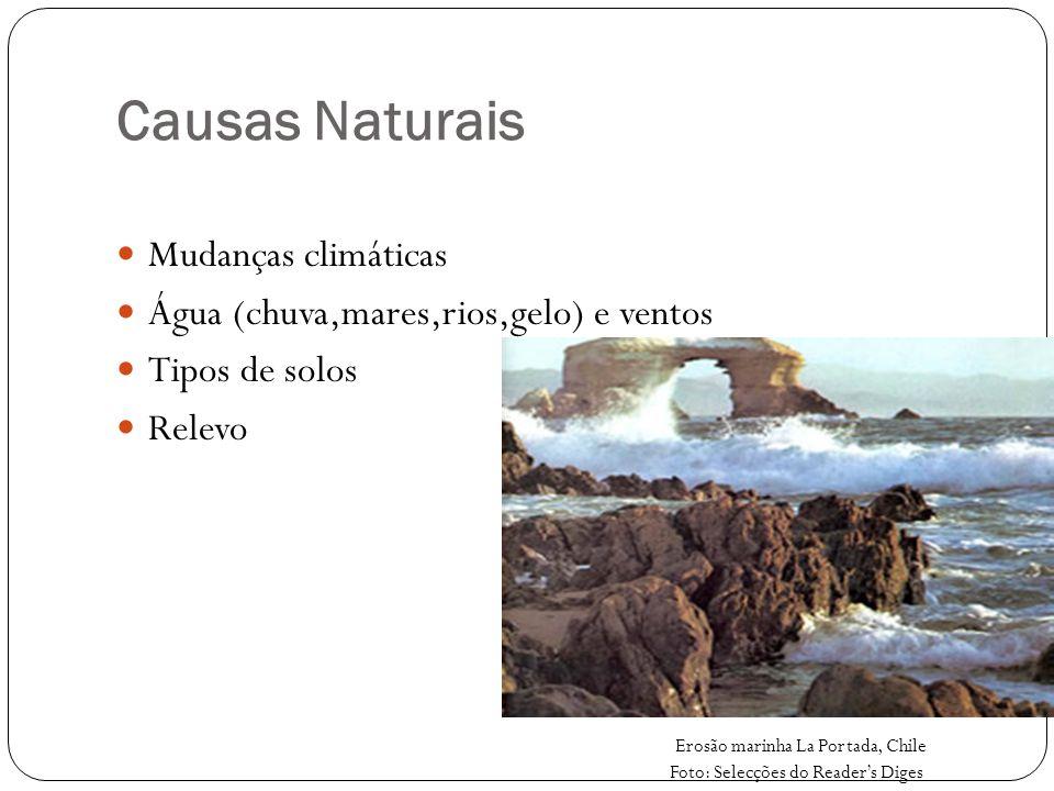 Causas Naturais Mudanças climáticas Água (chuva,mares,rios,gelo) e ventos Tipos de solos Relevo Erosão marinha La Portada, Chile Foto: Selecções do Re