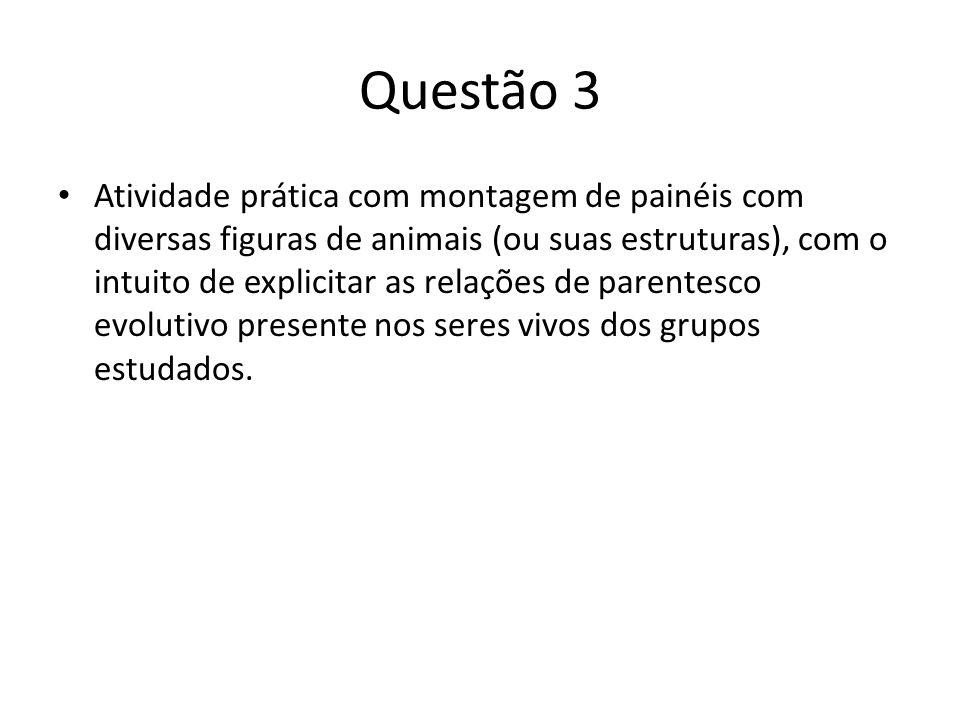 Questão 3 Atividade prática com montagem de painéis com diversas figuras de animais (ou suas estruturas), com o intuito de explicitar as relações de p