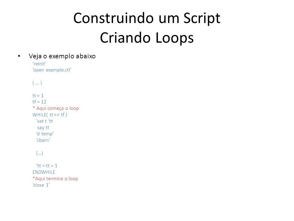 Construindo um Script Criando Loops Veja o exemplo abaixo reinit open example.ctl (... ) tt = 1 tf = 12 * Aqui começa o loop WHILE( tt <= tf ) set t t