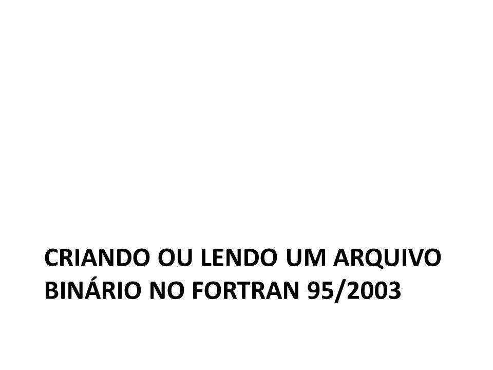 CRIANDO OU LENDO UM ARQUIVO BINÁRIO NO FORTRAN 95/2003