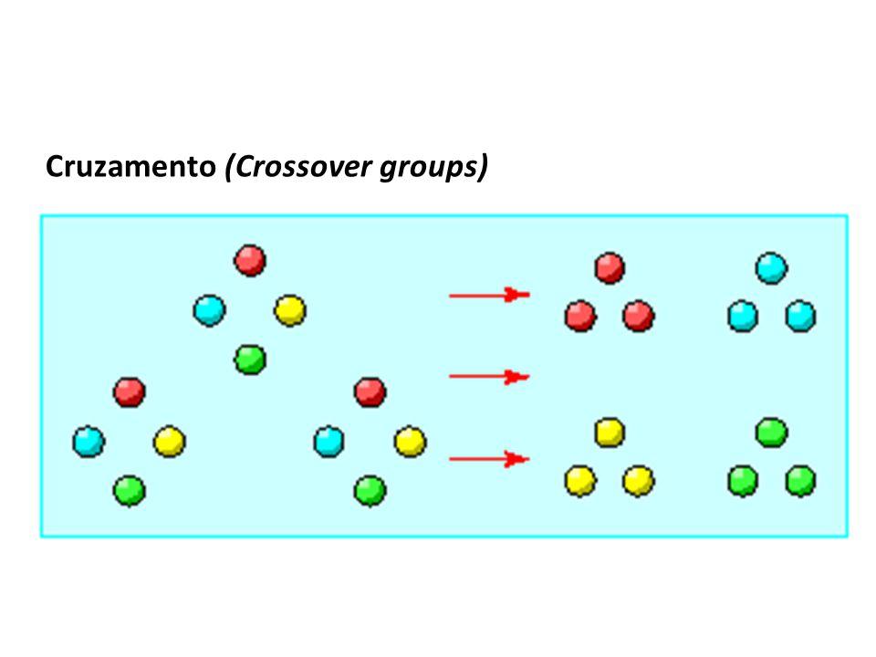 Cruzamento (Crossover groups)
