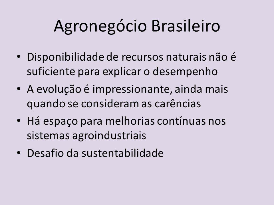 Agronegócio Brasileiro Disponibilidade de recursos naturais não é suficiente para explicar o desempenho A evolução é impressionante, ainda mais quando