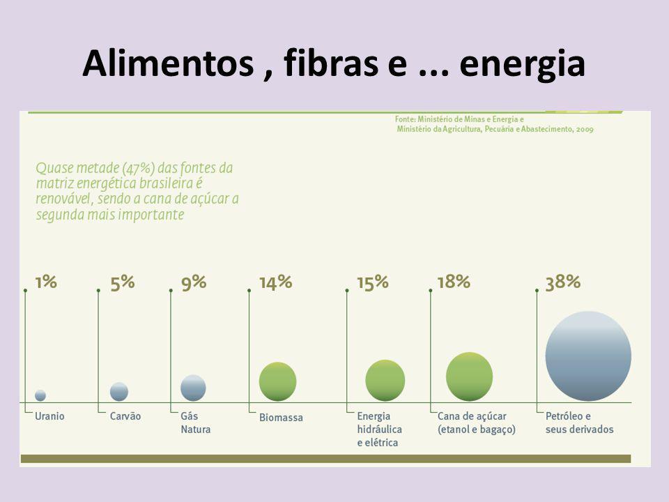 Alimentos, fibras e... energia