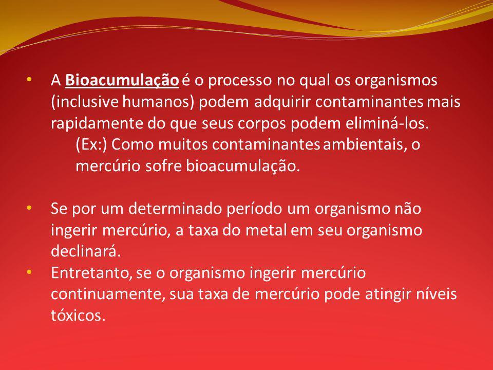 A Bioacumulação é o processo no qual os organismos (inclusive humanos) podem adquirir contaminantes mais rapidamente do que seus corpos podem eliminá-