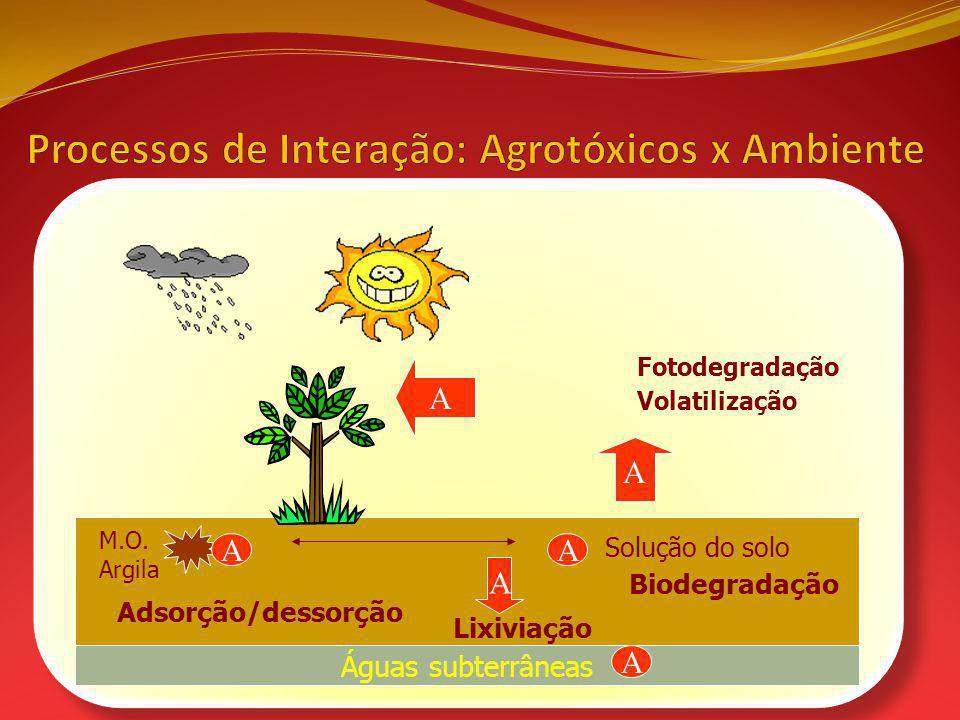 Águas subterrâneas Solução do solo M.O. Argila A A Adsorção/dessorção A Lixiviação A Biodegradação A A Fotodegradação Volatilização