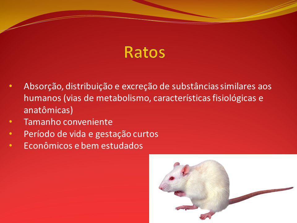 Absorção, distribuição e excreção de substâncias similares aos humanos (vias de metabolismo, características fisiológicas e anatômicas) Tamanho conven