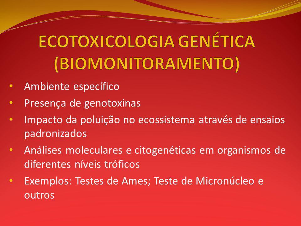 Ambiente específico Presença de genotoxinas Impacto da poluição no ecossistema através de ensaios padronizados Análises moleculares e citogenéticas em organismos de diferentes níveis tróficos Exemplos: Testes de Ames; Teste de Micronúcleo e outros