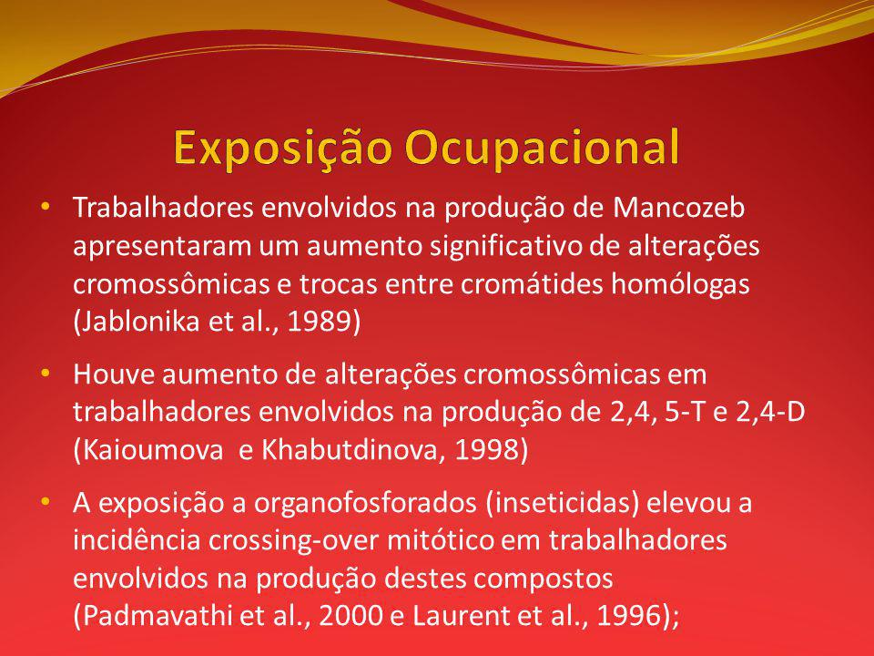 Trabalhadores envolvidos na produção de Mancozeb apresentaram um aumento significativo de alterações cromossômicas e trocas entre cromátides homólogas (Jablonika et al., 1989) Houve aumento de alterações cromossômicas em trabalhadores envolvidos na produção de 2,4, 5-T e 2,4-D (Kaioumova e Khabutdinova, 1998) A exposição a organofosforados (inseticidas) elevou a incidência crossing-over mitótico em trabalhadores envolvidos na produção destes compostos (Padmavathi et al., 2000 e Laurent et al., 1996);
