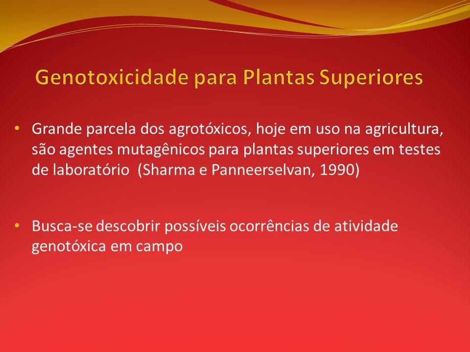 Grande parcela dos agrotóxicos, hoje em uso na agricultura, são agentes mutagênicos para plantas superiores em testes de laboratório (Sharma e Panneerselvan, 1990) Busca-se descobrir possíveis ocorrências de atividade genotóxica em campo