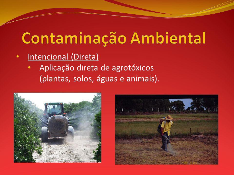 Intencional (Direta) Aplicação direta de agrotóxicos (plantas, solos, águas e animais).