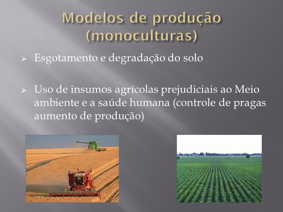 Esgotamento e degradação do solo Uso de insumos agrícolas prejudiciais ao Meio ambiente e a saúde humana (controle de pragas aumento de produção)