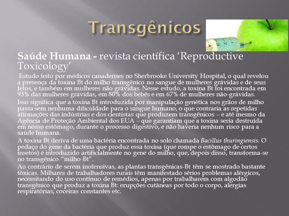 Saúde Humana - revista científica Reproductive Toxicology Estudo feito por médicos canadenses no Sherbrooke University Hospital, o qual revelou a presença da toxina Bt do milho transgênico no sangue de mulheres grávidas e de seus fetos, e também em mulheres não grávidas.