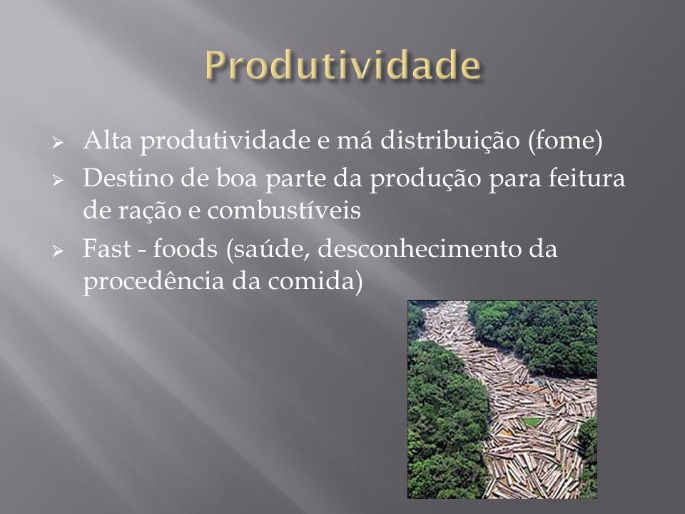 Alta produtividade e má distribuição (fome) Destino de boa parte da produção para feitura de ração e combustíveis Fast - foods (saúde, desconhecimento