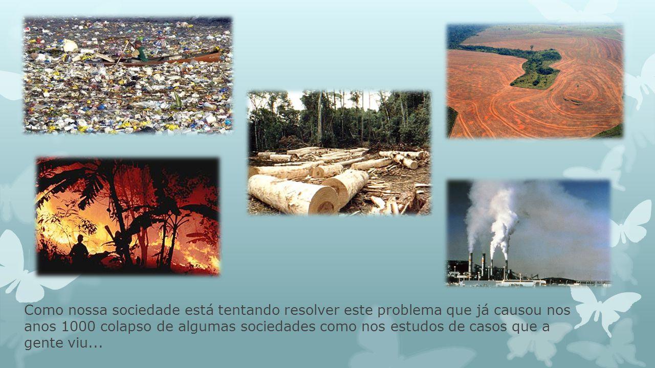 Como foi essa destruição do habitat e da biodiversidade nos estudos de caso: Ilha de Pascoa Maias Vikings