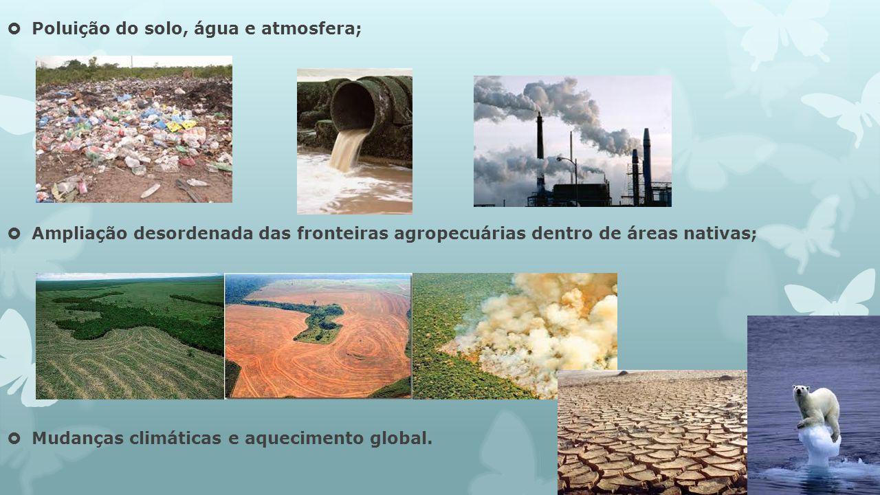 Poluição do solo, água e atmosfera; Ampliação desordenada das fronteiras agropecuárias dentro de áreas nativas; Mudanças climáticas e aquecimento glob