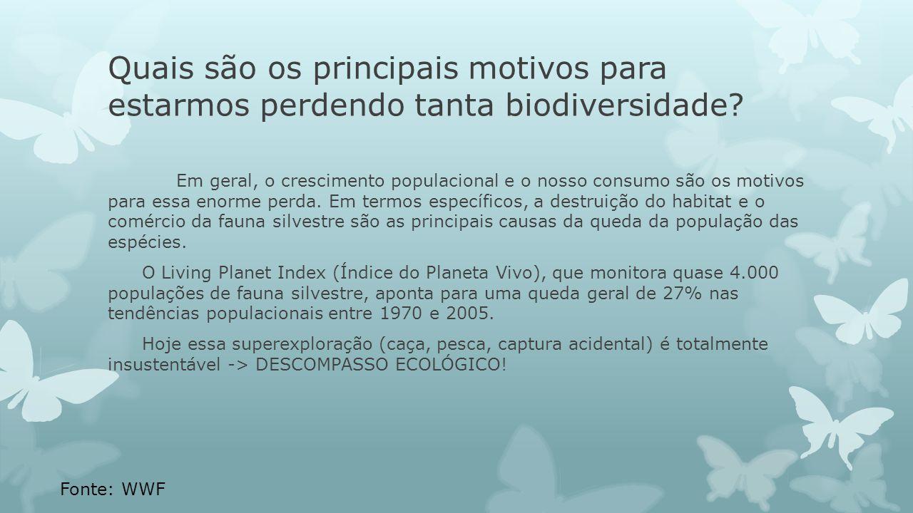 Quais são os principais motivos para estarmos perdendo tanta biodiversidade? Em geral, o crescimento populacional e o nosso consumo são os motivos par
