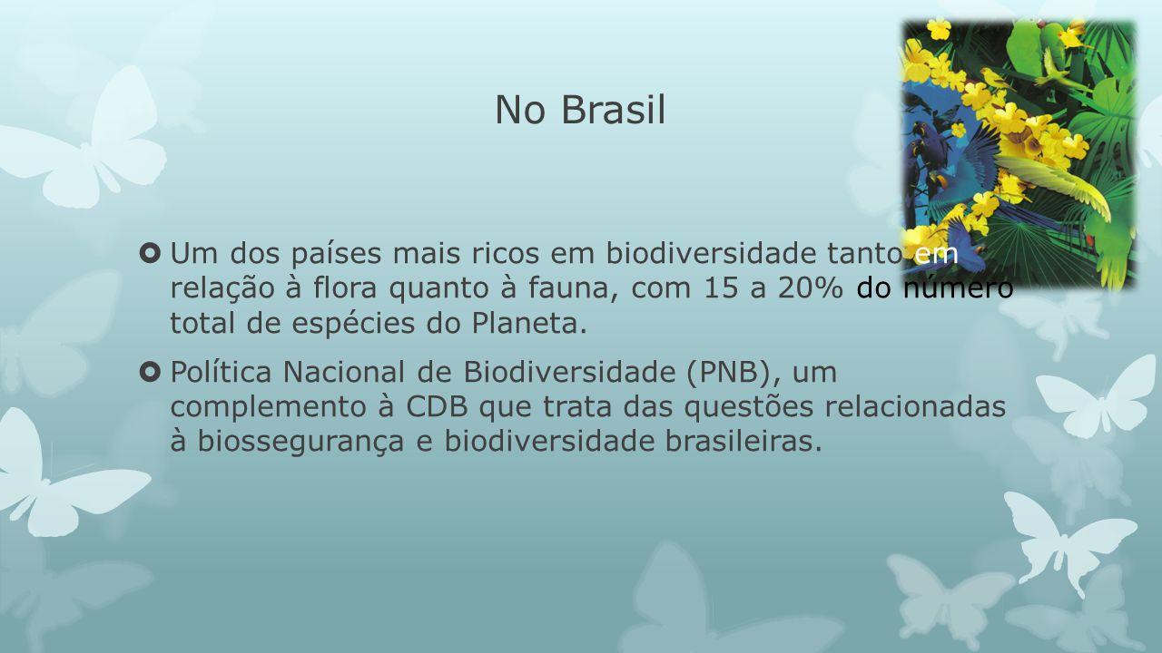 No Brasil Um dos países mais ricos em biodiversidade tanto em relação à flora quanto à fauna, com 15 a 20% do número total de espécies do Planeta. Pol