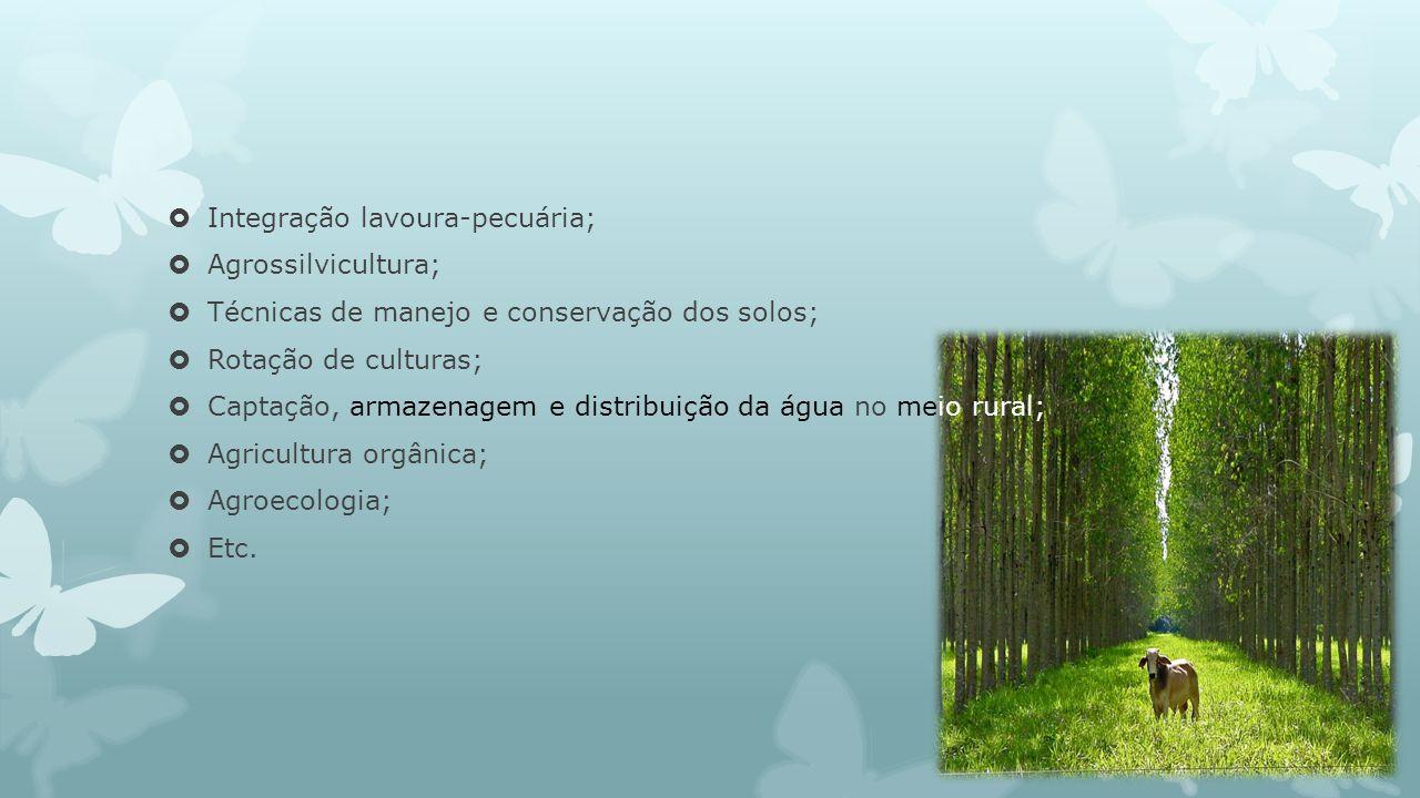 Integração lavoura-pecuária; Agrossilvicultura; Técnicas de manejo e conservação dos solos; Rotação de culturas; Captação, armazenagem e distribuição