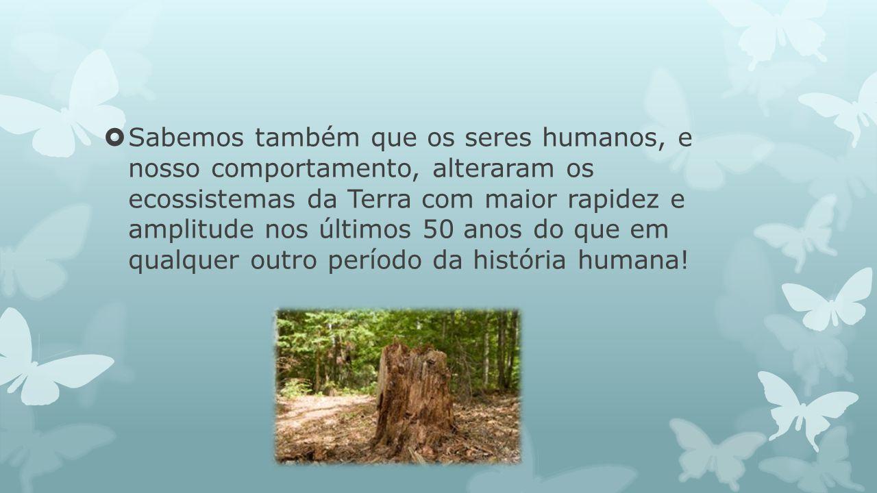Sabemos também que os seres humanos, e nosso comportamento, alteraram os ecossistemas da Terra com maior rapidez e amplitude nos últimos 50 anos do qu