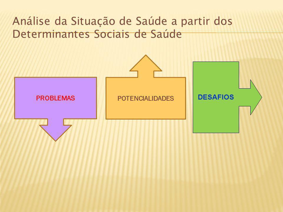 Análise da Situação de Saúde a partir dos Determinantes Sociais de Saúde PROBLEMAS POTENCIALIDADES DESAFIOS