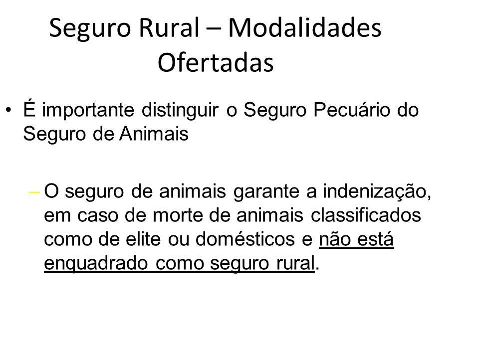 Seguro Rural – Modalidades Ofertadas É importante distinguir o Seguro Pecuário do Seguro de Animais –O seguro de animais garante a indenização, em cas