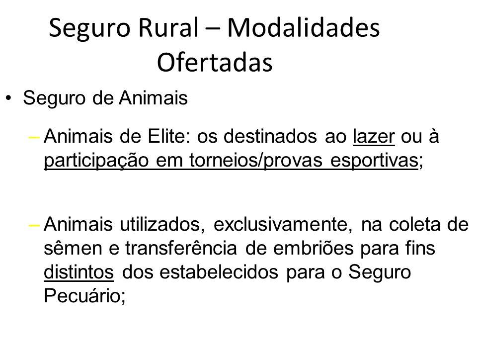 Seguro Rural – Modalidades Ofertadas Seguro de Animais –Animais de Elite: os destinados ao lazer ou à participação em torneios/provas esportivas; –Ani