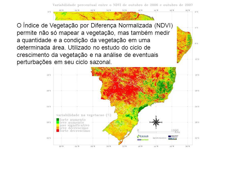 O Índice de Vegetação por Diferença Normalizada (NDVI) permite não só mapear a vegetação, mas também medir a quantidade e a condição da vegetação em u