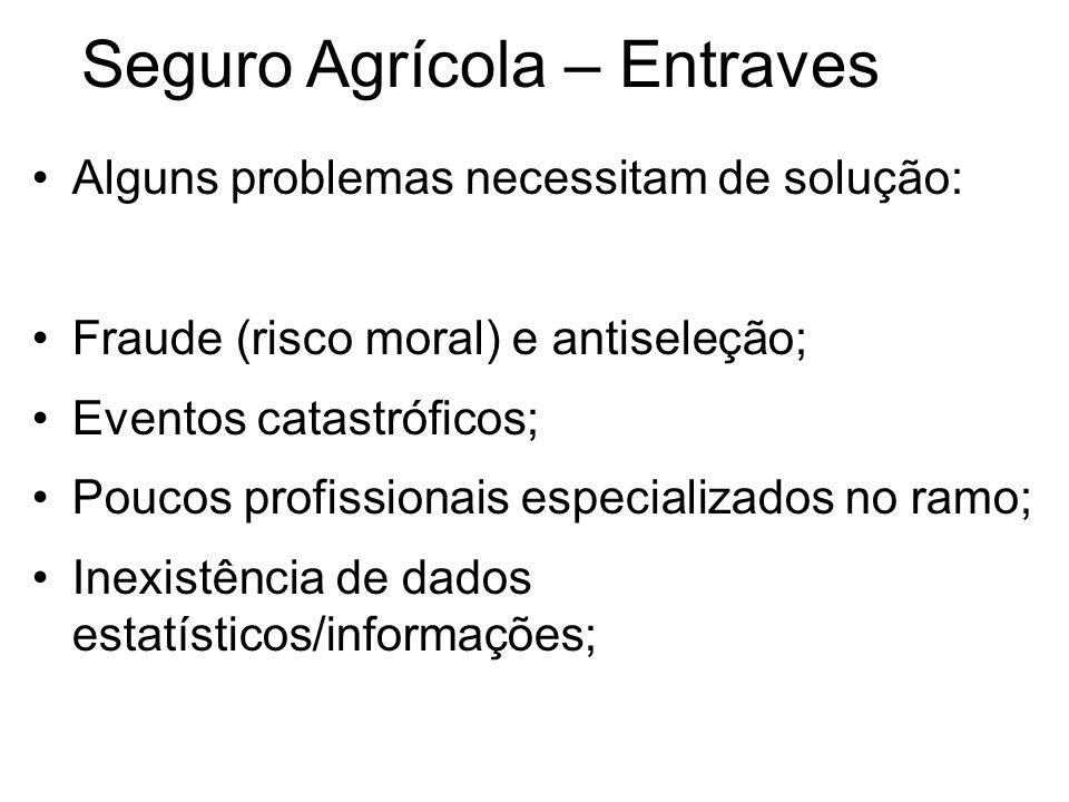 Seguro Agrícola – Entraves Alguns problemas necessitam de solução: Fraude (risco moral) e antiseleção; Eventos catastróficos; Poucos profissionais esp