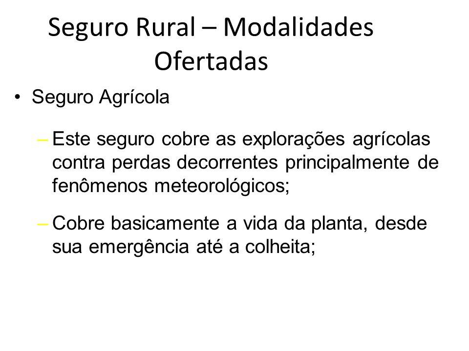Seguro Rural – Modalidades Ofertadas Seguro Agrícola –Este seguro cobre as explorações agrícolas contra perdas decorrentes principalmente de fenômenos