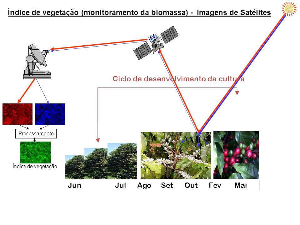 Índice de vegetação (monitoramento da biomassa) - Imagens de Satélites Set Nov Dez Jan Mai Processamento Índice de vegetação Ciclo de desenvolvimento