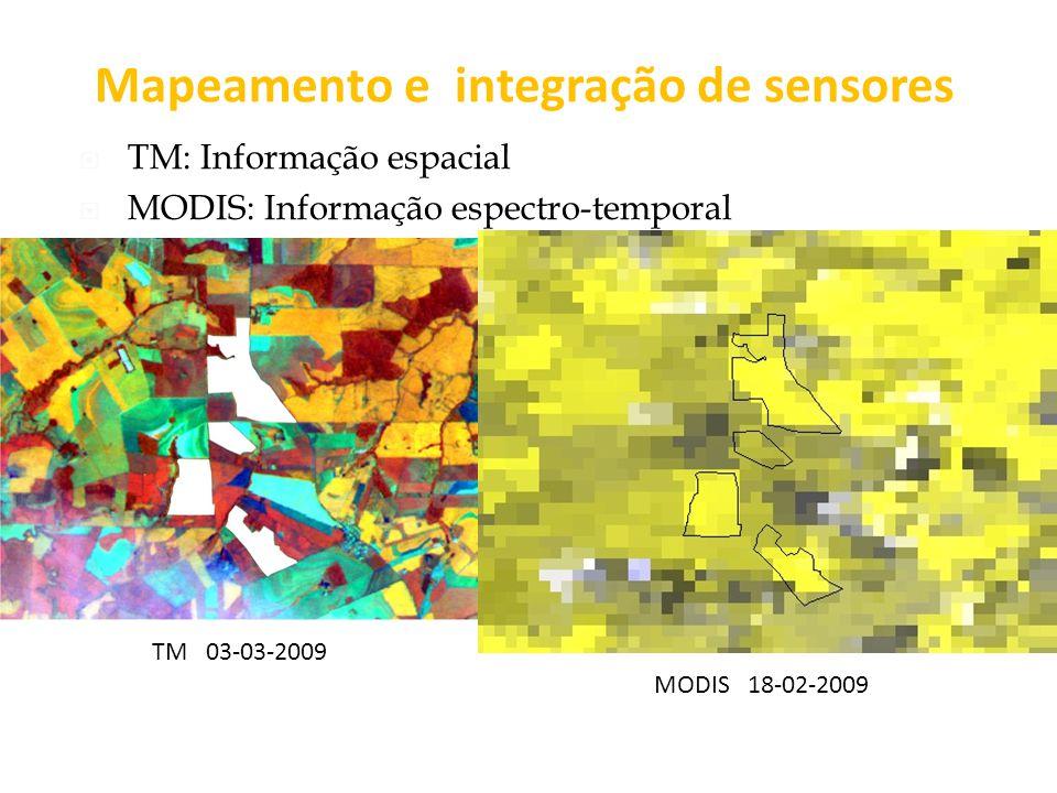 Mapeamento e integração de sensores TM: Informação espacial MODIS: Informação espectro-temporal MODIS 18-02-2009 TM 03-03-2009