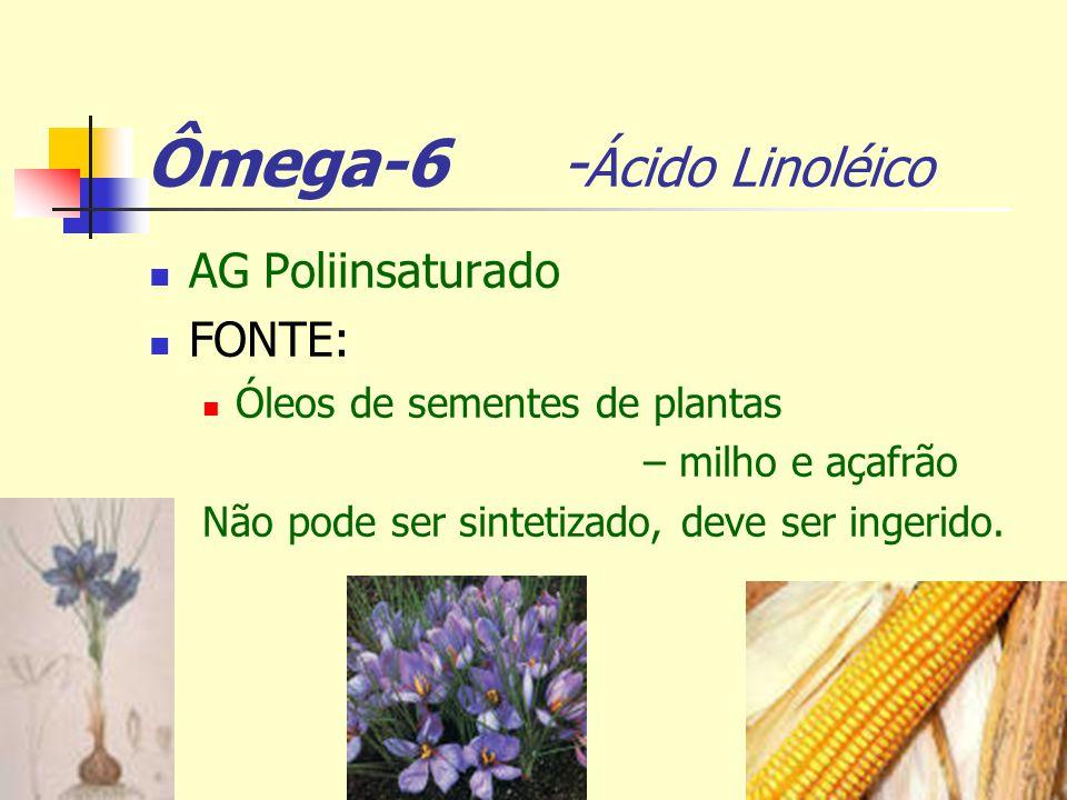 Ômega-6 - Ácido Linoléico AG Poliinsaturado FONTE: Óleos de sementes de plantas – milho e açafrão Não pode ser sintetizado, deve ser ingerido.