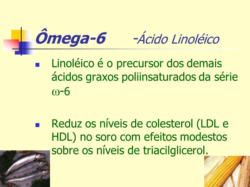 Ômega-6 - Ácido Linoléico Linoléico é o precursor dos demais ácidos graxos poliinsaturados da série - 6 Reduz os níveis de colesterol (LDL e HDL) no s