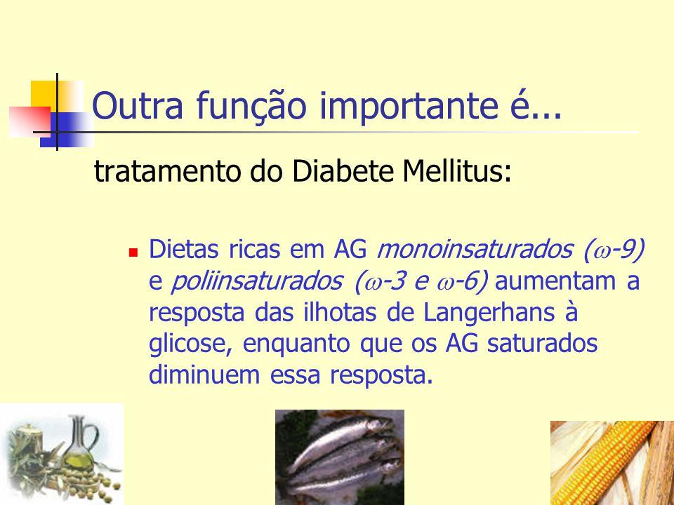 tratamento do Diabete Mellitus: Dietas ricas em AG monoinsaturados ( -9) e poliinsaturados ( -3 e -6) aumentam a resposta das ilhotas de Langerhans à