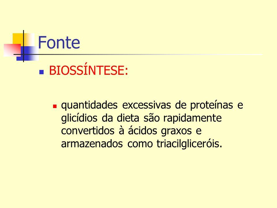Fonte BIOSSÍNTESE: quantidades excessivas de proteínas e glicídios da dieta são rapidamente convertidos à ácidos graxos e armazenados como triacilglic