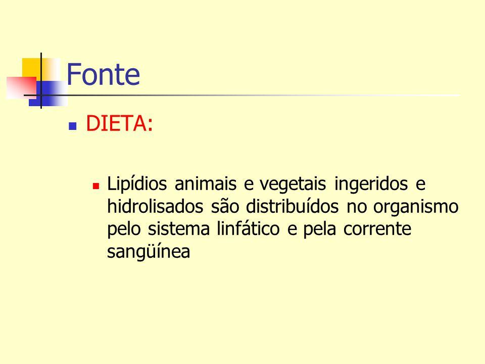 Fonte DIETA: Lipídios animais e vegetais ingeridos e hidrolisados são distribuídos no organismo pelo sistema linfático e pela corrente sangüínea